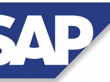 SAP ERM Strategy – An Observation