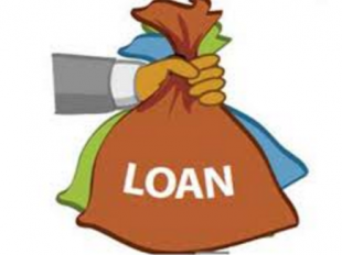 Guide To Loan Options For Your Small Business